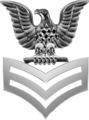 PO1 Collar Silver USN.png