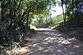 "PORTEIRA DE ""TAUBUA"" 2 - panoramio.jpg"