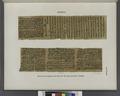 Papyrus. Hieratischer Papyrus. No. I, Lin. 154-234. (jetzt im K. Museum zu Berlin.) (NYPL b14291191-44335).tiff