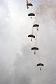 Parachutes (1392280095).jpg