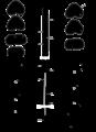 Parasite180130-Figure 2 - spermatozoa of Bucephalidae.png