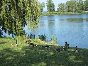 Des Rapides Park - Image: Parc des Rapides 02