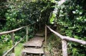Bosque de Fray Jorge National Park - Image: Parquefrayjorge