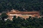 Parques Nacionais do Jamanxim e do Rio Novo, Pará (31181652037).jpg