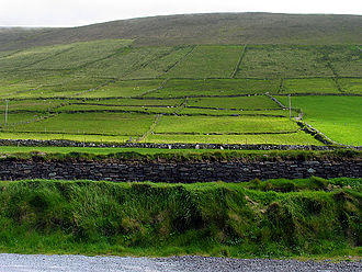 Mount Eagle (Ireland) - Pasture along the slopes of Mt.Eagle