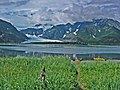 Pederson Lagoon and Glacier.jpg