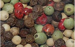Black, green, pink, and white peppercorns