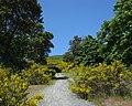 Perimeter Park path. MORE INFO IN PANORAMIO-DESCRIPTION - panoramio.jpg