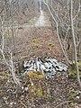 Perlacher Forst Müllhalde Abfall Asbest.jpg