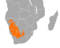 Philetairus socius distribution map.png