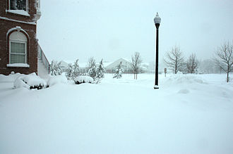 February 5–6, 2010 North American blizzard - Full force of storm in community of South Riding, Virginia, on February 6. View is facing east toward Route 606, Loudoun County Parkway.