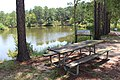 Picnic table edge of lake, General Coffee State Park.jpg
