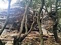 PikiWiki Israel 52876 view in the galilee rock garden.jpg