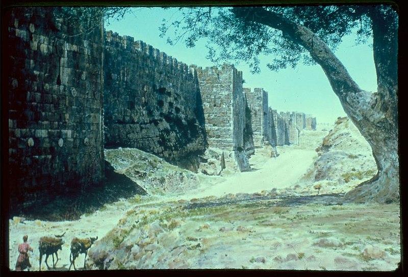 הקיר הצפוני של העיר העתיקה