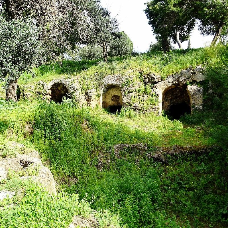 כפר שמריהו