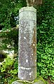 Pillar - Hakone-jinja - Hakone, Japan - DSC05841.jpg