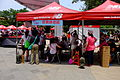 Pink Hiking Carnival Guest Rest Area 20150509.jpg