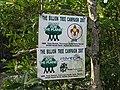Plant for the planet - Kuala Gula - panoramio.jpg