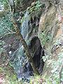 Plitvice Lakes National Park 17.JPG