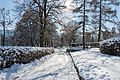 Poertschach Hans-Pruscha Weg 5 Wintertag 02022015 248.jpg