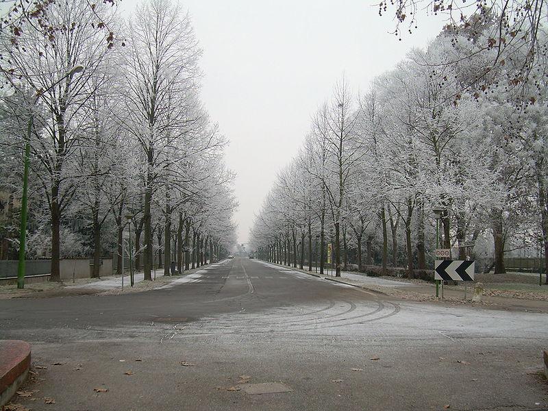 File:Portomaggiore Viale Cesare Battisti.jpg