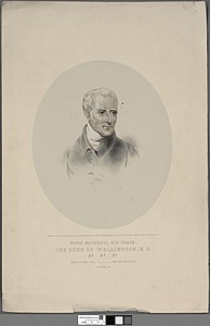Portrait of Field Marshall His Grace, The Duke of Wellington, K.G. (4672135).jpg