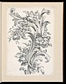 Print, Floral and Acanthus Leaf Design, 1740 (CH 18222989).jpg
