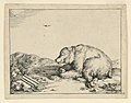 Print, Recumbent Bear, from a Se, 1664 (CH 18419959).jpg