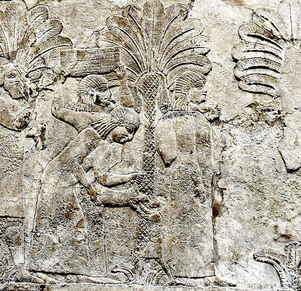 palms - image 4