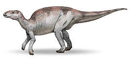 Probactrosaurus gobiensis