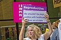 Protesting Illinois 6th District Republican Congressman Peter Roskam Chicago Illinois 7-26-18 2812 (42764892865).jpg