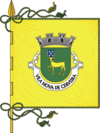 Flag of Vila Nova de Cerveira