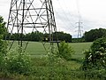 Pylons across farmland near Canterbury - geograph.org.uk - 1345721.jpg