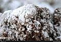 Qom Salt Dome 13951209 22.jpg