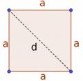 Quadrat4.png