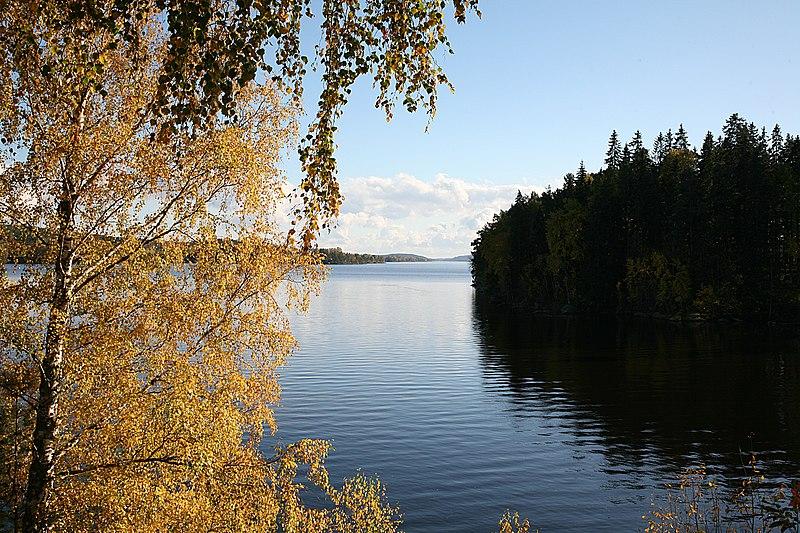 File:Rødnessjøen 2007-10-07.jpg