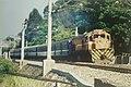 R174 with Pingkuai.jpg