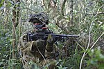 RAAF Leading Air Craftsman Kyle Weatherall, No. 1 Security Forces section gunner, searches for simulated opposing forces during Exercise Cope North 17 at North Field, Tinian.jpg