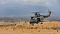 RAF Puma Helicopter on Exercise Askari Thunder in Kenya MOD 45153900.jpg