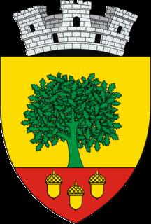 Cajvana,  Suceava, Rumänien