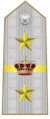 Rank insignia of generale designato d'armata of the Italian Army (1945-1947).png