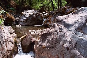 Rattlesnake creek.jpg
