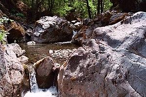Mendocino National Forest - Rattlesnake Creek
