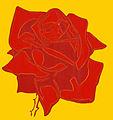 Red rose 01.jpg