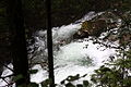 Reinbachfälle taufers 69773 2014-08-21.JPG