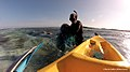 Removal of net by Kayak in the Maldives by the Olive Ridley Project.jpg