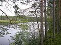 Rengårdstjärnen (Byske socken, Västerbotten, 721952-172772) 02.jpg