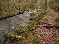 River Bovey below Houndtor Wood (2) - geograph.org.uk - 1086028.jpg