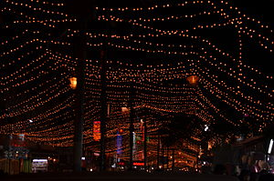 Karol Bagh - River of lights at Karol Bagh
