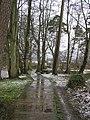 River walk at Cranny, Omagh - geograph.org.uk - 1194221.jpg